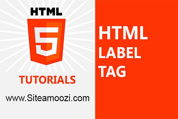 معرفی و کاربرد تگ label در HTML