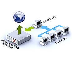 انواع سرویس های میزبانی وب یا web hosting | میزبانی وب | web hosting