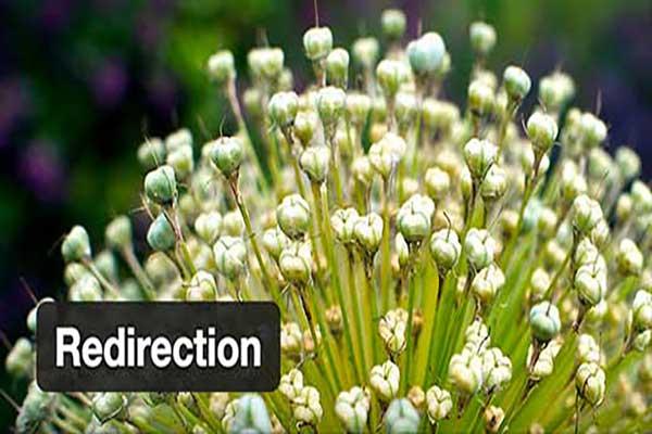 افزونه Redirection | افزونه ریدایرکت وردپرس | تغییر مسیر url در وردپرس