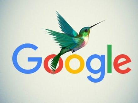 الگوریتم مرغ مگس خوار گوگل چیست؟   غذای مرغ مگس خوار   الگوریتم مگس